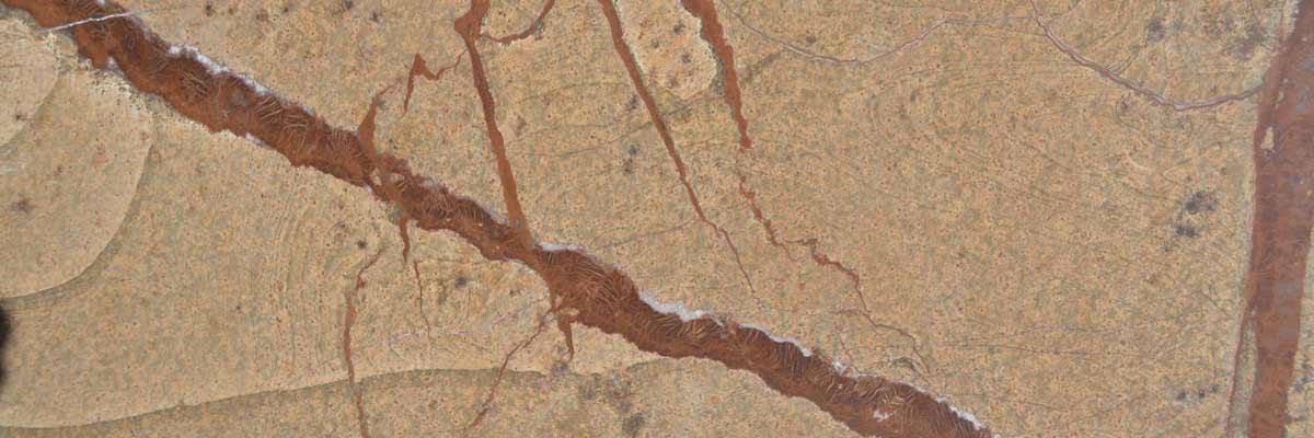 pietra forest-brown testata